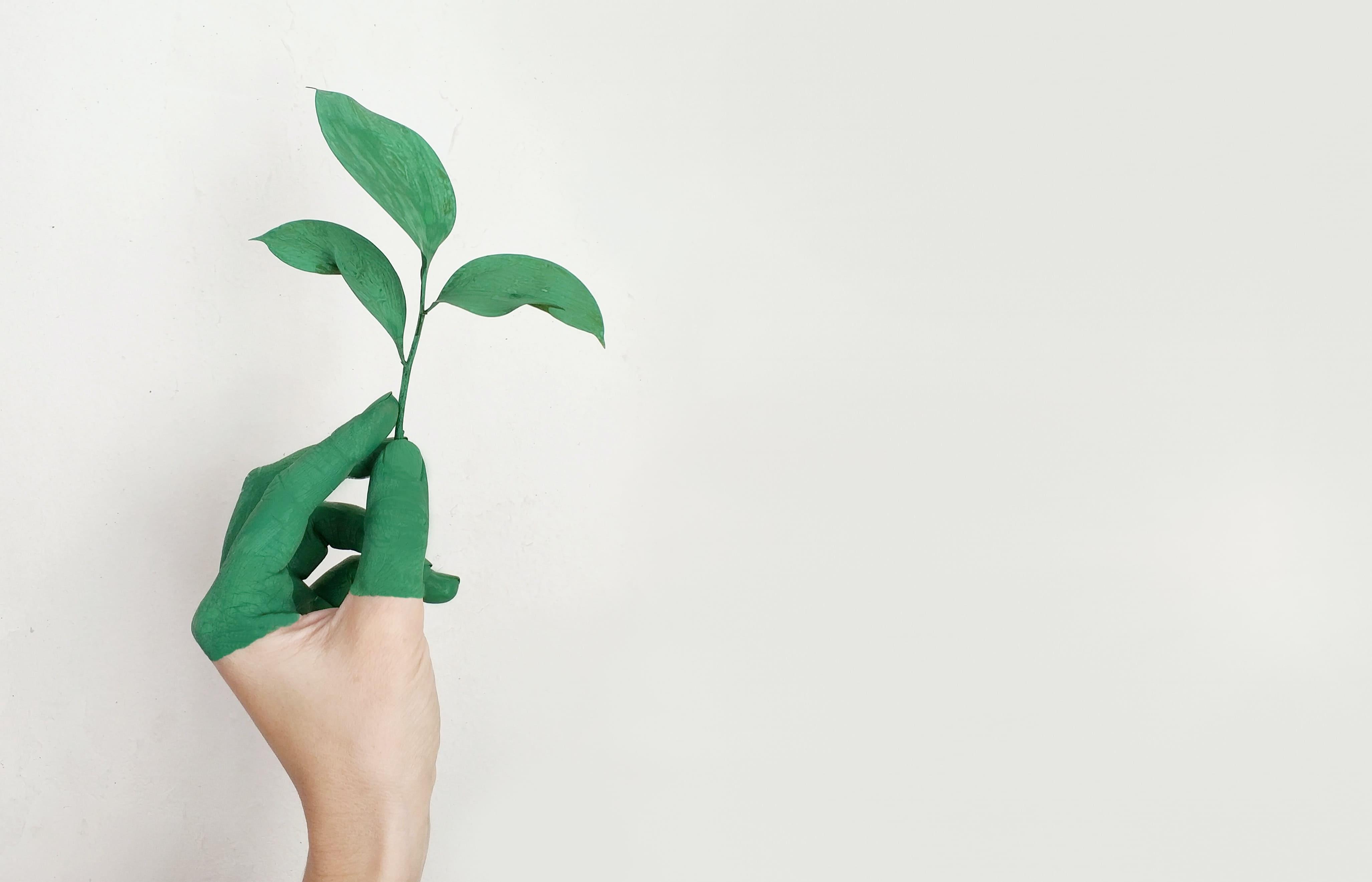 Certificado ambientales de edificios